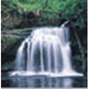 Диагностика экологическая фото