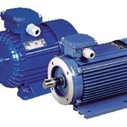 Электродвигатели Cantoni Group фото