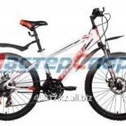 Велосипед горный Twister 2.0 disk фото
