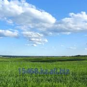 Земельный участок сельхозназначения от 1000 га фото