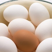 Яйца фото
