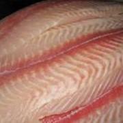 Рыбное филе фото