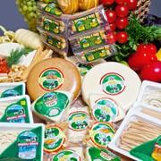 Производство сычужных/рассольных мягких сыров фото