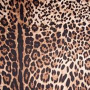 Велюр Леопард фото