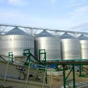 Хранение и перевалка пшеницы фото