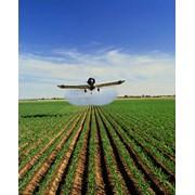 Внесение Трихограммы и др.авицонные услуги фото