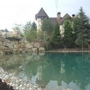 Строительство пруда и устройство водоема. фото