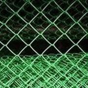 Сетка-рабица с полимерным покрытием зеленая 2.0х10 м ячейка 50х50мм d=2.0мм фото