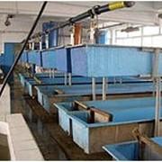 Оборудование для рыбоводства и рыборазведения фото