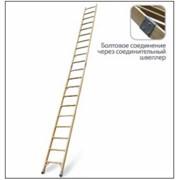 Лестница приставная составная ЛСПС Луч ЛСПС-4,25 фото