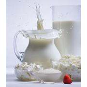 Молоко овечье фото