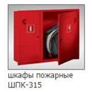 Пожарный шкаф шпк 315 для одного крана и одного огнетушителя фото