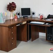 Стол компьютерный Алекс 12 № 248 фото