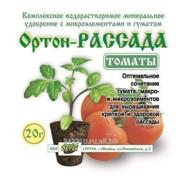 Подкормка для растений Рассада томаты20г фото