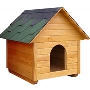Домики (будки) для собак фото