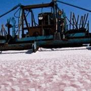 Соль морская для посыпания дорог, Sea salt фото