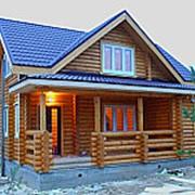 Двухэтажный дом-баня BL35 фото