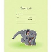 Тетради ученические 12 листов фото