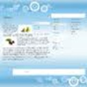 Хостинг, web-сайты, web-узлы в сети интернет