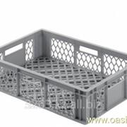 Коробка Ringoplast для рыбы и птицы 600x400x154 фото