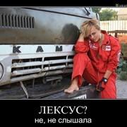 Услуги самосвалов - ЗИЛы, КАМАЗы, 30-тонники. фото
