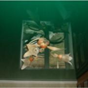Потолок навесной бесшовный фото