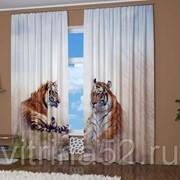 "Фотошторы ""Два тигра"" фото"