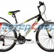 Велосипед горный Sporting 1.0 (15, 17, 19) фото