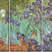 Модульная картина Ирисы, Винсент ван Гог фото