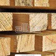 Продажа пиломатериалов из разных пород деревьев фотография