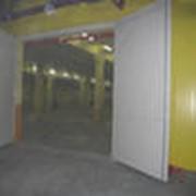 Ворота противопожарные распашные EI-60 фото