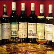 Вина в ассортименте от производителя. фото