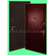 Стальная дверь Порошок-1 фото