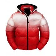Куртка зимняя на холлофайбере CJ 1408 фото