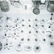 Фурнитура мебельная пластиковая фото