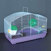 Клетка для грызунов HOMеZOO №923 эмаль (58*32*42) (1*4) нк-106 923# фото