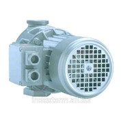 Pompa de circulatie cu rotor uscat Biral EBZ 35 V/4-85 фото
