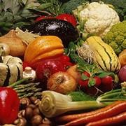 Хранение овощей и фруктов, терминал для храниения продуктов фото