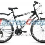 Велосипед горный Terra 1.0 фото