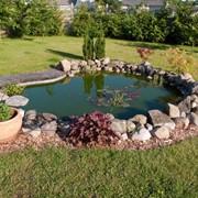 Строительство декоративных прудов и фонтанов фото