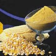 Глютен кукурузный сырой фото