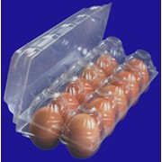 Упаковка для яиц из полипропилена и ВПС, боксы для куринных и перепелинных яиц фото