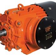 Электродвигатели взрывозащищенные АВ250, АВ280 фото