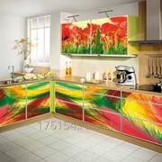 Кухня-картина Эксклюзив фото