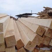 Лес строительный сосна фото