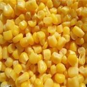 Кукуруза 3,4 класса фото
