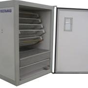 Инкубатор лабораторно-бытовой ИЛБ-0,5 фото
