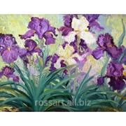 Картина на холсте Цветы Ирисы фото