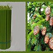 Свеча восковая №100 зеленая с ароматом ели фото