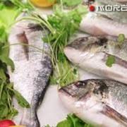 Рыба, морепродукты фото